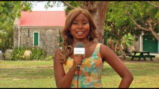 Video Estate Whim Museum, St. Croix