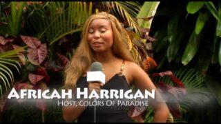Video St. John, Virgin Islands – Carnival Parade